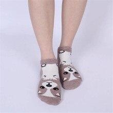 Assorted Dog Socks