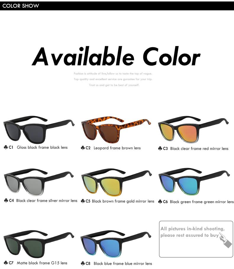 Polarized Vintage Sunglasses c58