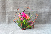 Miniature Garden Glass Geometric Terrarium Tabletop Succulent Fern Moss Plant Desktop Terrarium Box Bonsai Flower Pot