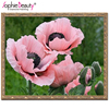 Best Sale Kits For Embroidery New 3d Diy Diamond Painting Beautiful Pink Flower Willow Handicraft Inlay