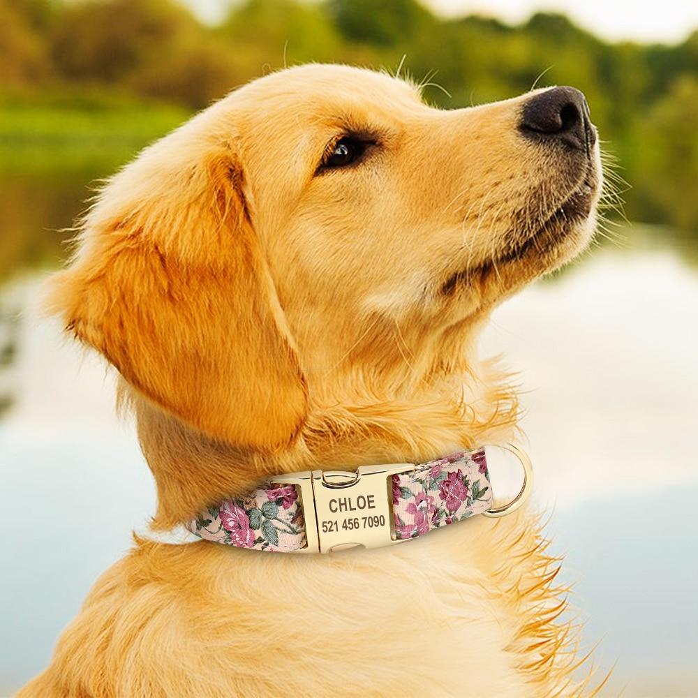 collier-chien-personnalisé-fleur2