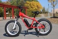 High Quality 20inch 21 Speed Powerful 4 0 Inch Fat Tire Electric Bike 36V 8AH 250W
