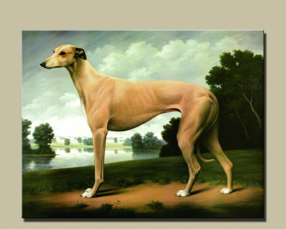 A Greyhound Picture Office Decoration Oil Painting Modern Canvas Paintings Wall Art Free Shipping Unframed