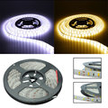 Waterproof 5M Cool Pure / Warm White 5630 SMD 300LEDs Flexible Strip DC12V 5A Adapter