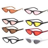 Cat Eye Sunglasses Women Small Triangle Eyeglasses Vintage Stylish Cateye Sun Glasses Female UV400 Glasses free shipping Women's Glasses