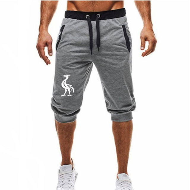 Plus Size Summer Casual Fitness Shorts Joggers For Men