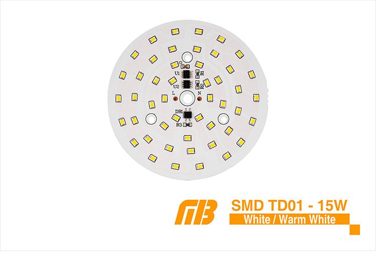 LED Down Light_TD-01 Chip_07