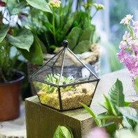 Modern Succulent Plant Glass Geometric Container Desktop Flower Pot Bonsai Planter Garden Home Office Indoor Outdoor Terrarium