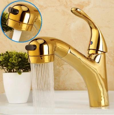 Pull double function flower shower head bathroom scale gold faucet