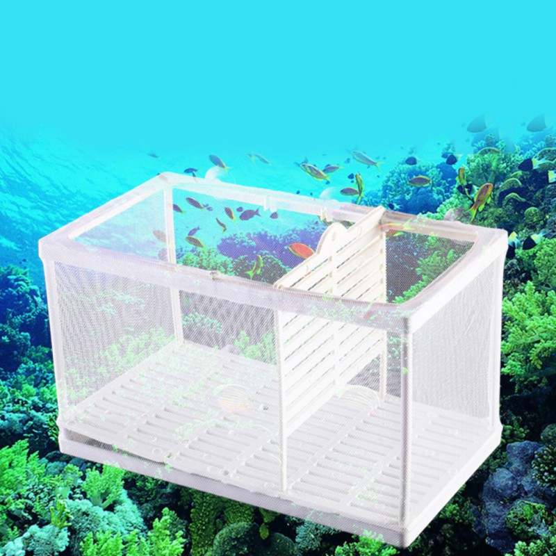 Aquarium Fish Tank Breeding Breeder Isolation Box Aquarium Hatchery Incubato Grow Seedlings Reproduction Holder Замок