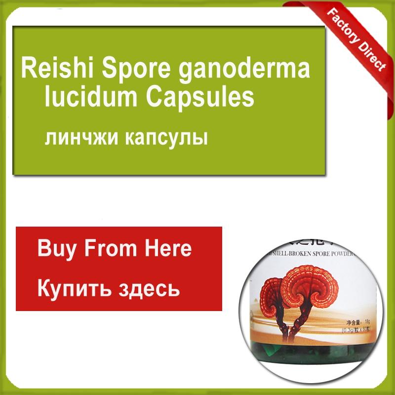 Reishi Spore ganoderma lucidum lingzhi For Body Relaxation 500mg 100softgels bag 500 1 duan wood ganoderma lucidum reishi spore extract oil softgels triterpene30%