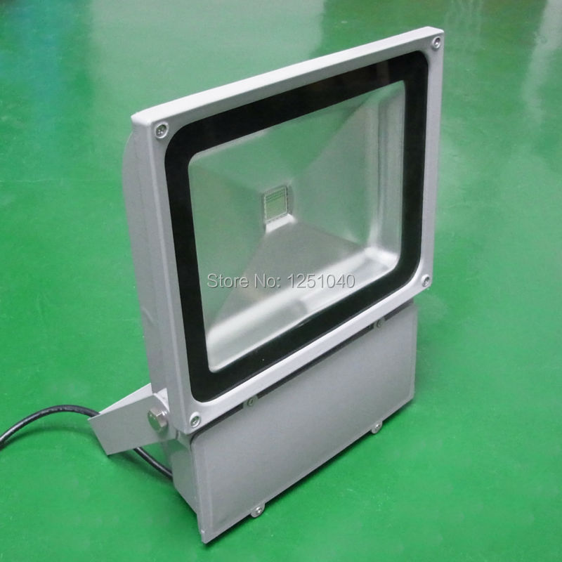 Фотография 80W Changeable Color LED FloodLights AC85-265V Outdoor Spotlights IP65 Waterproof IR 24 Key Controller Garden Buildings Lighting