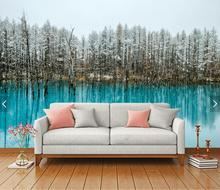 Photo Bedroom Sofa Landscape