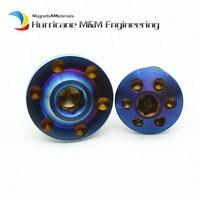 Titanium Bolts Shell Repair for DUKADI M5 x12/13mm Pan Head Burned Blue Color Motorcycle Decoration Ti Screw Ti Fastener 4/6pcs