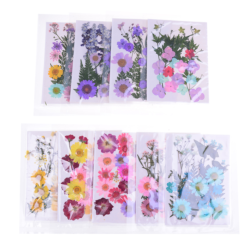 10 Pieces Pressed Dried Real Ice Flowers Resin Jewelry Findings DIY Crafts