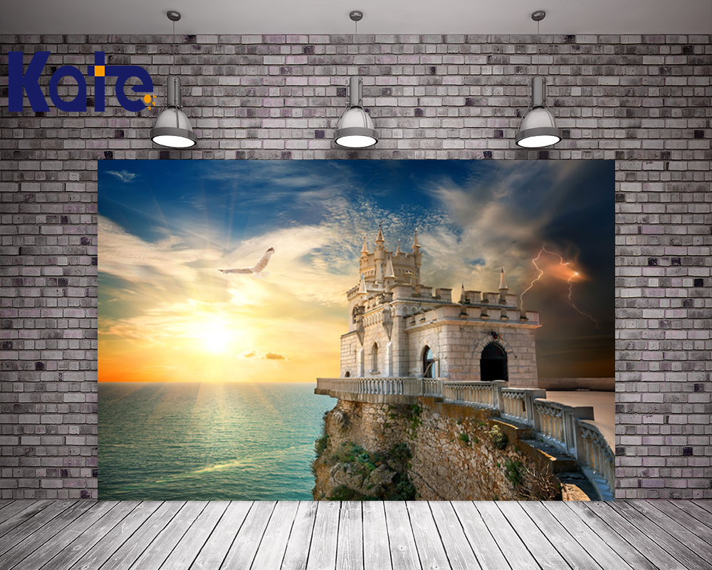 Kate Digital Printing High Quality Photography Beach Sunset Glow For Children Background Seagull  No Wrinkles Foto Background no–talk therapy for children