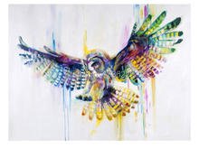 Free Shipping Canvas art Abstract birds painting colorful decorative oil painting only painted Painting