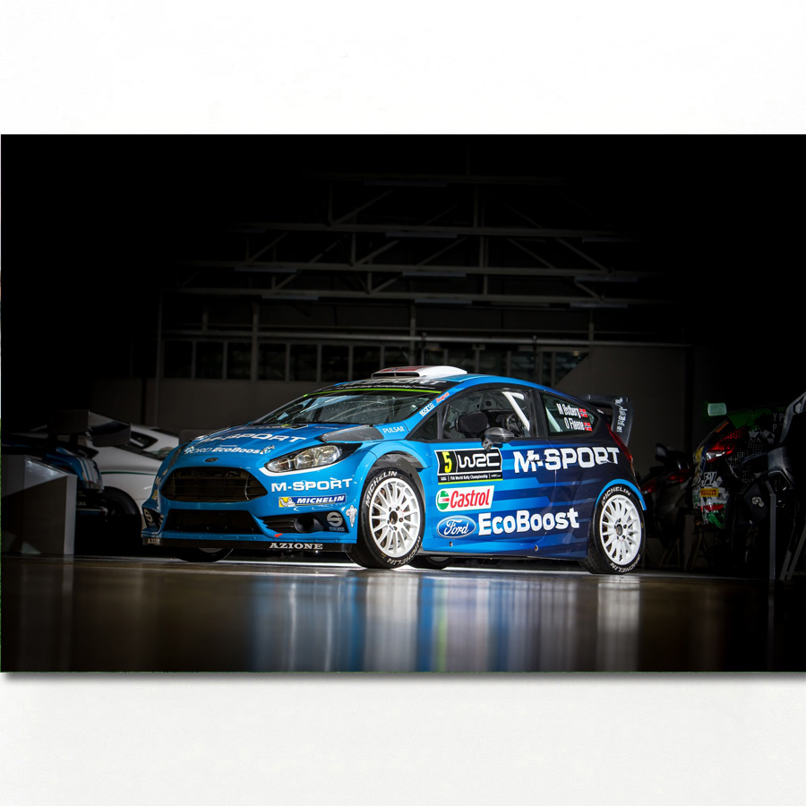 Sport Car Ford Fiesta RS WRC Race Racing Vehicles Wall Art Posters And Prints Canvas Art Framed Paintings For Room Decor