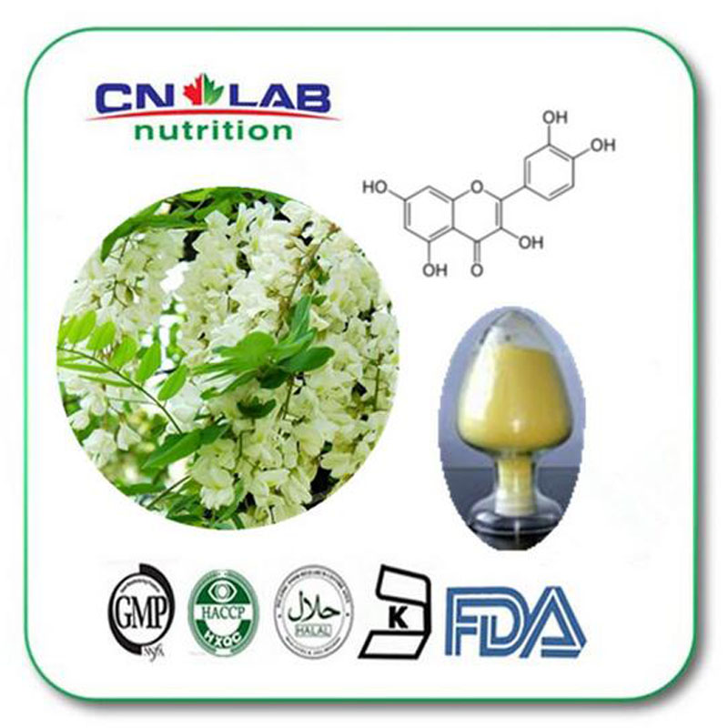 Pharmaceutical and food grade 96% Quercetin dihydrate by HPLC Sophora Japonica extract fine powder 1000g with factory price beverages and food additives ternate pinellia extract
