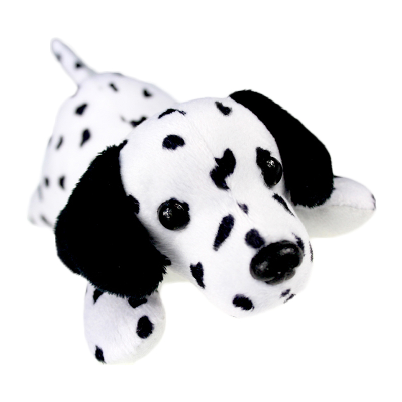 dalmatian dog_1