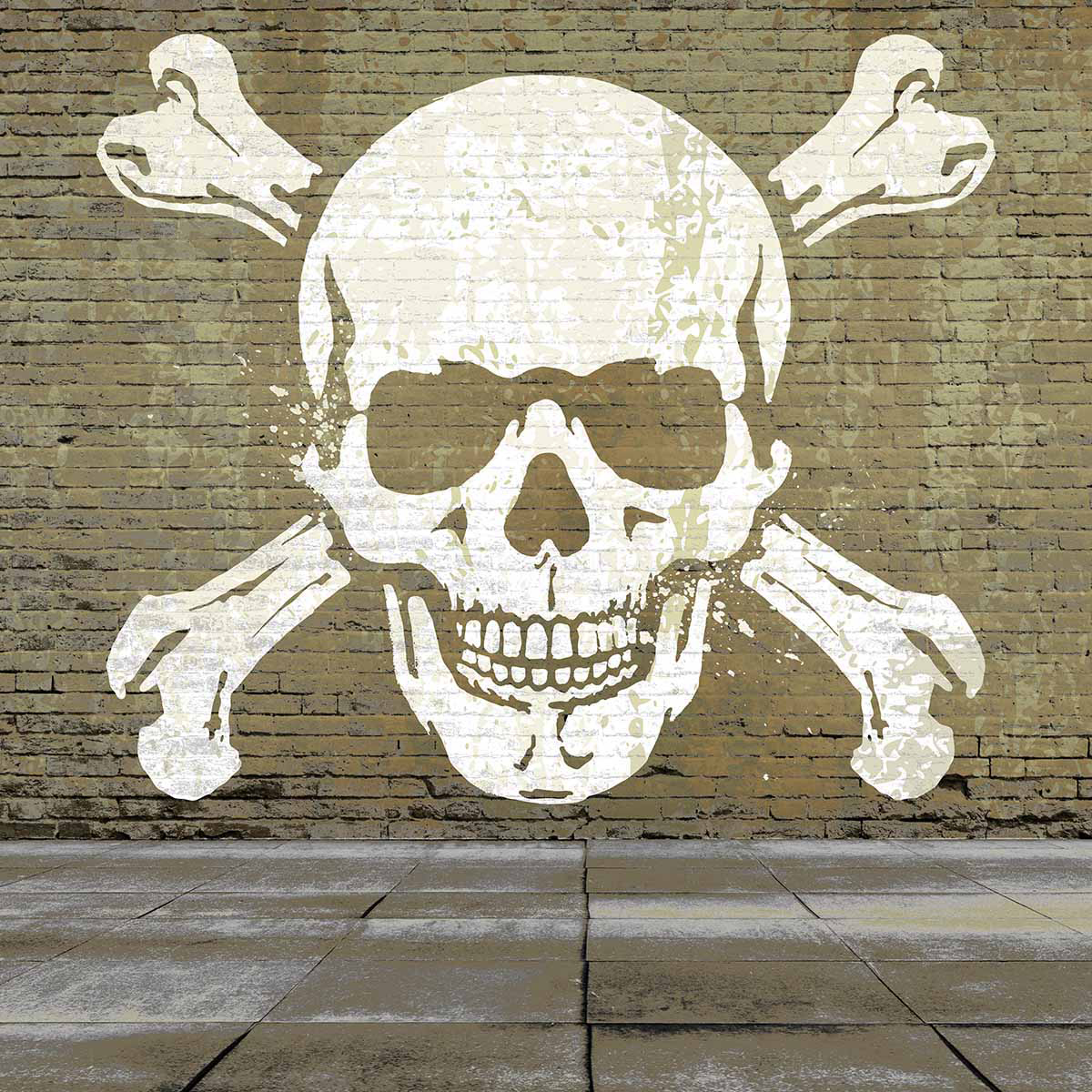 Allenjoy brick wall skull cool graffiti background for photo studio background photography in background from consumer electronics on aliexpress com