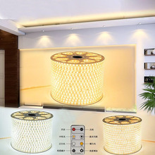 100m/lot Dimmable LED strip SMD 2835 120leds/m 220V flexible light tiras led tape waterproof ip67 with controller