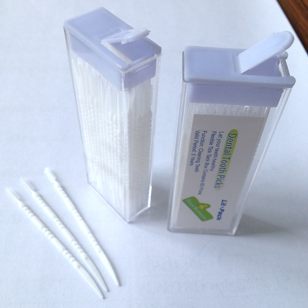 3000 boxs Lit-Pack oral hygiene Dental Tooth Picks Toothpick Dental flosser stick toothpick Dentist