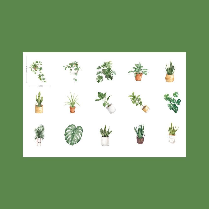 Купить с кэшбэком 20packs/lot Gift For Love Life And Love Plants Green Oxygen Life Boxed Decor Children Sticker