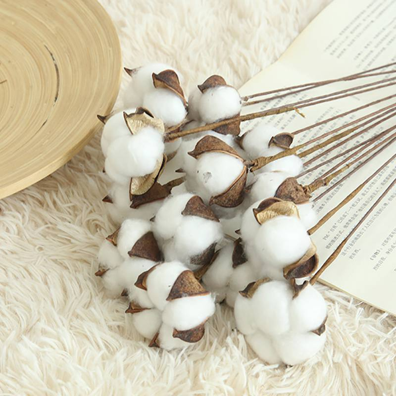 10PCS/LOT DIY Naturally Dried Cotton Stems Farm house decorative dried Artificial White Cotton Branch Artificial Flower Head thumbnail