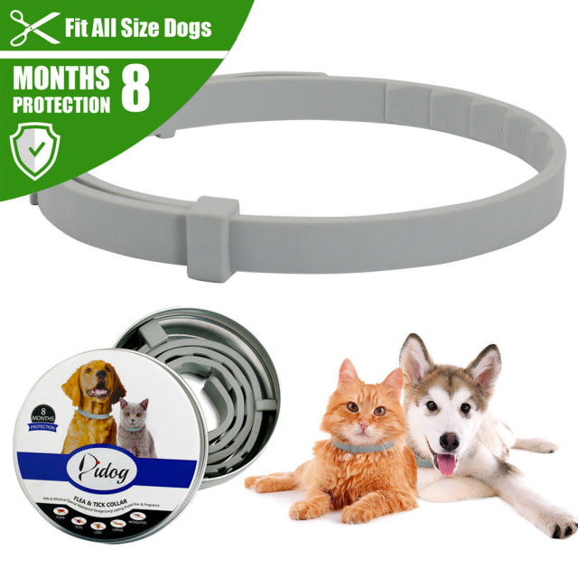 New Pet Dog Collar Anti Flea Ticks Mosquitoes Outdoor Adjustable Pet Collar Cat Dog Accessories 8 Months Long-term Protection
