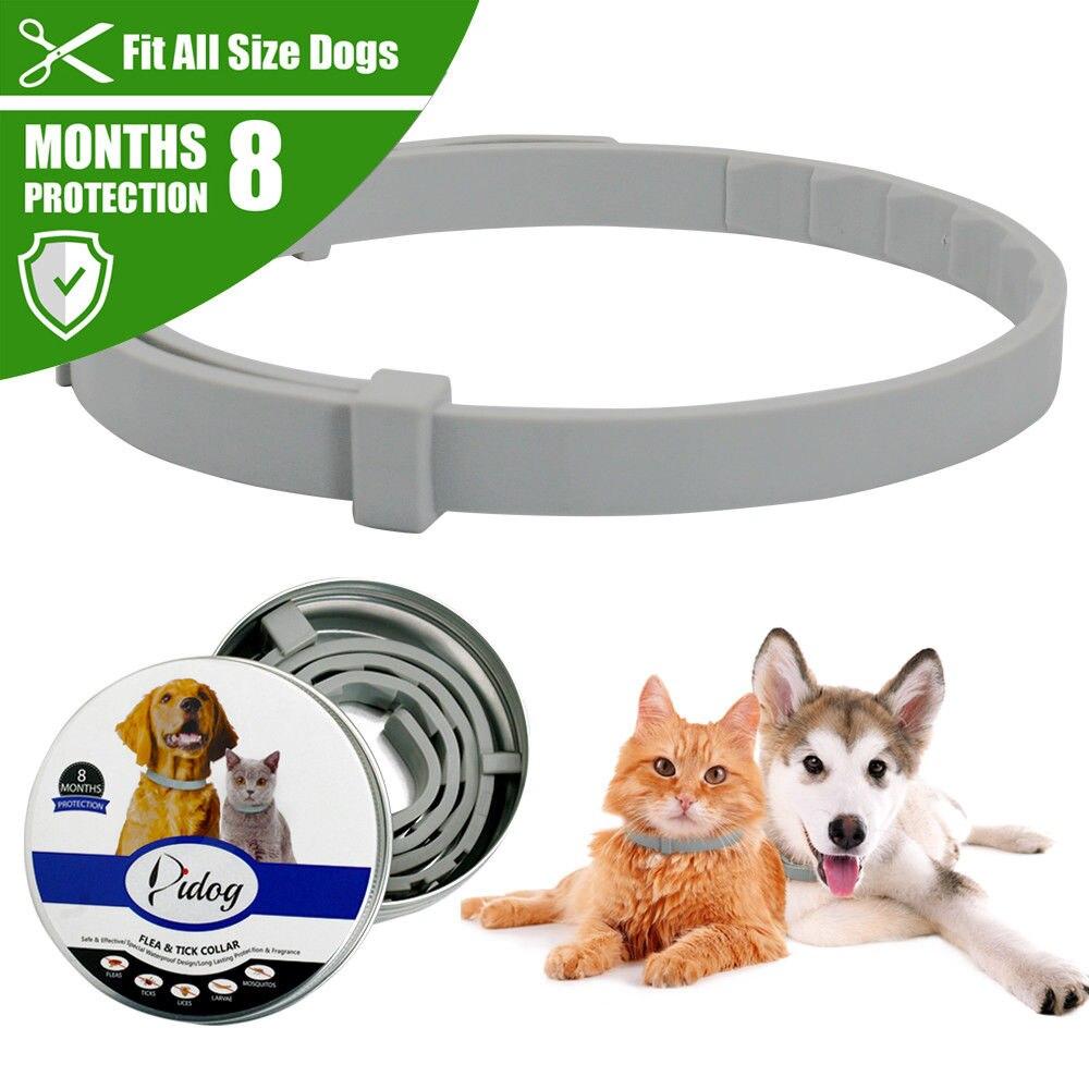Nouveau collier pour chien Anti puces tiques moustiques en plein air réglable collier pour animaux de compagnie accessoires pour chien chat 8 mois de Protection à long terme