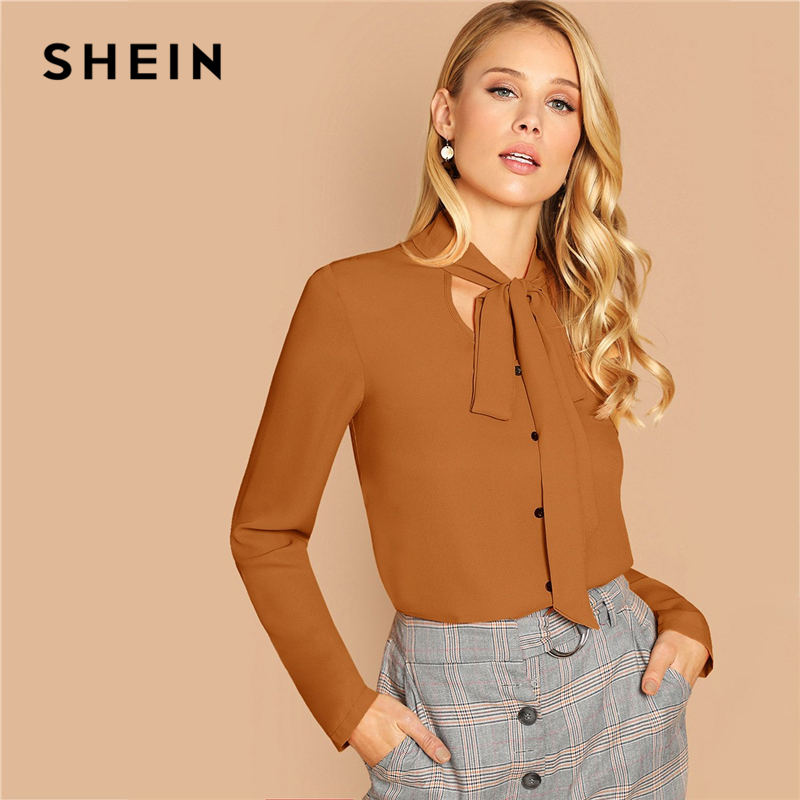 SHEIN Brown Tie Neck Single Breasted Top Solid Blouse Summer Women Spring Workwear Office Lady 2019 Long Sleeve Classy Blouses