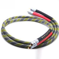 HI End OFC Silver Plated audio RCA interconnect cable with Nakamichi RCA connector