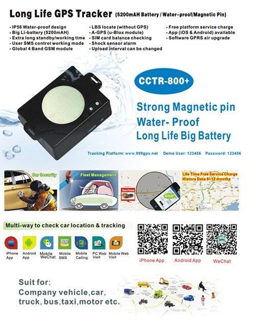 DM-201505-CCTR-800+