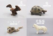 solid pvc figure wild animal Arctic Wolf Vultures Turtle Pythons models 4pcs/set