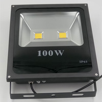AC85 265V 100W LED floodlight waterproof outdoor advertising Spotlights basketball court lights Free Shipping