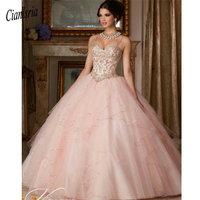Princess Popular Puffy Ball Gown Coral Quinceanera Dresses 2019 Sweet 16 Dress Vestido De 15 Anos Custom