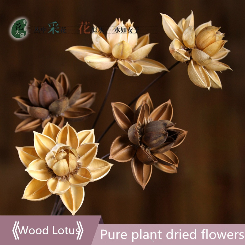 2pcs wooden lotus flower bendable metal rod super natural handmade 2pcs wooden lotus flower bendable metal rod super natural handmade dried flowers simulation bouquets living room flor 55 cm long in artificial dried mightylinksfo