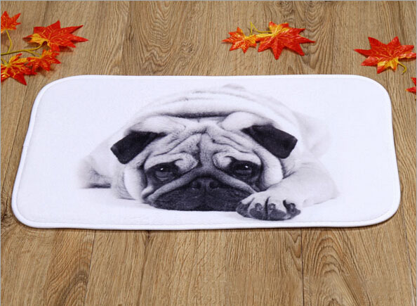 New Design Silent Dog Home Door Front Non Slip Mat Carpet 40x60cm Entrance Doormats Living Room Bedroom Floor Mats Kitchen Rugs
