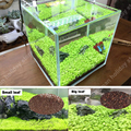 1000 Pcs/bag Aquarium Grass Seeds Plants Fish Tank Decoration Glossostigma Hemianthus Callitrichoides Landscape Aquatic Plants