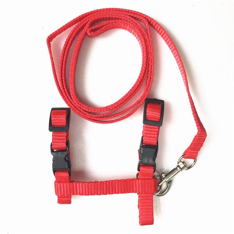 Arnés y correa ajustable para Collar de Gato, correa de nailon para mascotas, productos para gatos y cuello Halter