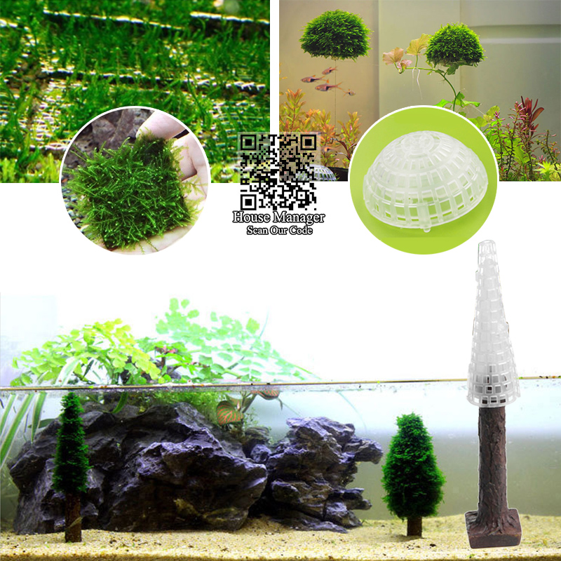 Moss Bed / Ball / Christmas tree for aquarium moss water plants modeling, Aquarium Fish Tank ...