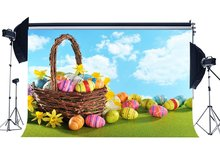 Happy Easter Eggs Backdrop Basket Fresh Yellow Flowers Green Grass Meadow Blue Sky White Cloud Nature Background