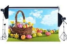 Mutlu paskalya yumurtaları Zemin Sepeti Taze Sarı Çiçekler Yeşil Çim Çayır Mavi Gökyüzü Beyaz Bulut Doğa Arka Plan
