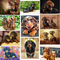 Diy 5d diamond painting Dachshund rhinestones full square drill diamond embroidery animal cute Dog cross stitch mosaic pattern