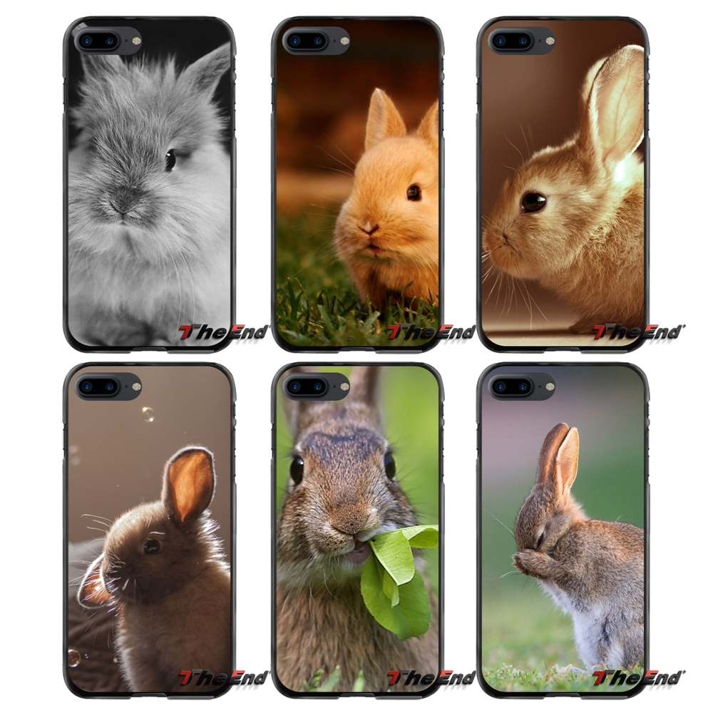 Rabbit Pet Printed For Apple iPhone 4 4S 5 5S 5C SE 6 6S 7 8 Plus X iPod Touch 4 5 6 Accessories Phone Cases Covers