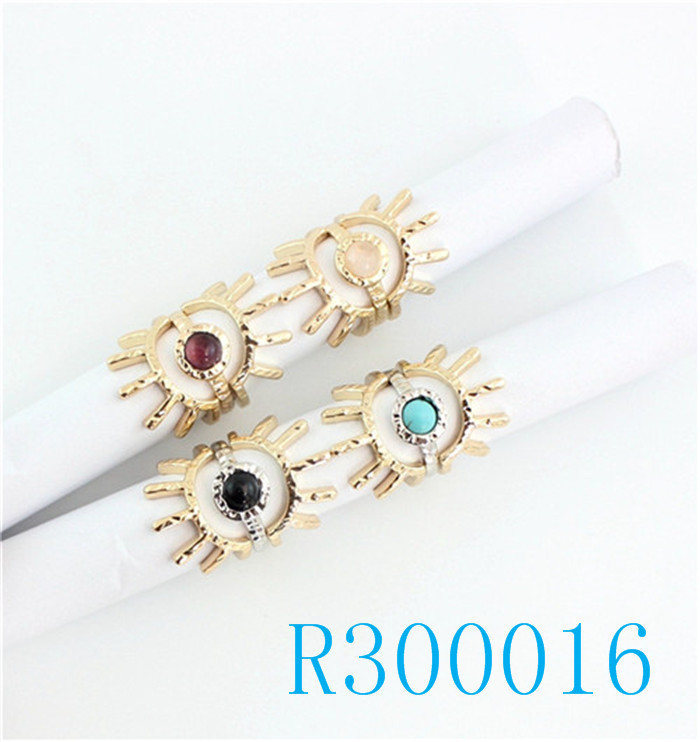 R300016