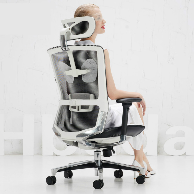 Household Computer Chair Office Boss Chair Seat E-Sports Seat Simple Comfortable Ergonomic Chair Mesh Lifting Reclining Chair
