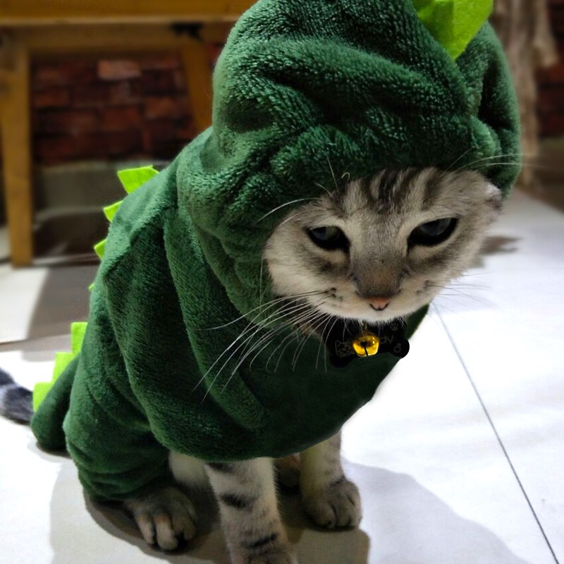 Winter Cat Clothes Dinosaur Design Pet Clothing For Small Cats Funny Hoodie Costume Pets Kitten Warm Coat Supplies Xs-xxl