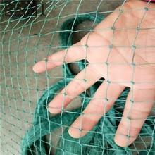Wholesale garden fence mesh Plant vines climbing green nets Poultry breeding pheasant chicken Gardening net